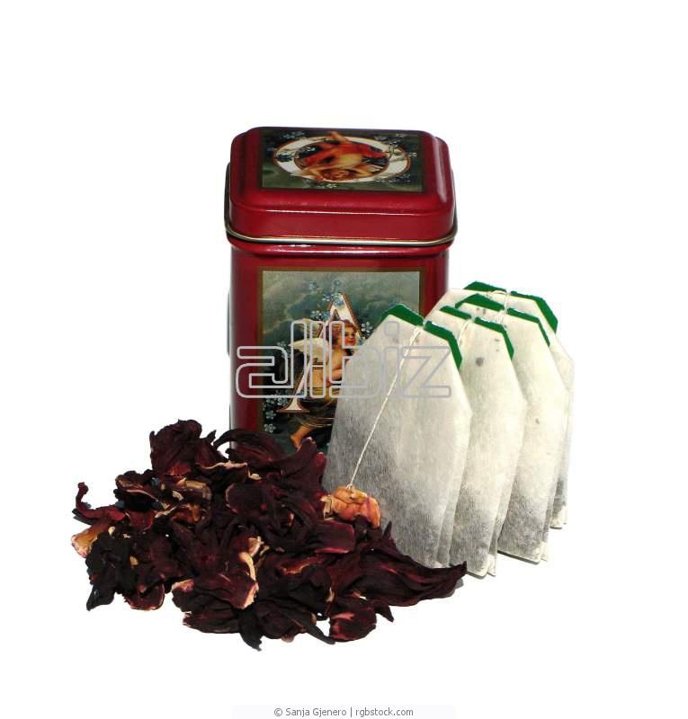 شراء Sudanese Hibiscus