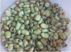 Sudanese Beans